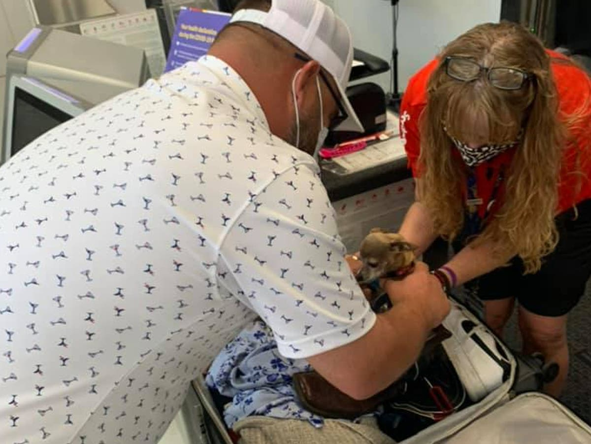 Couple gets to airport to find luggage is overweight because of stowaway dog