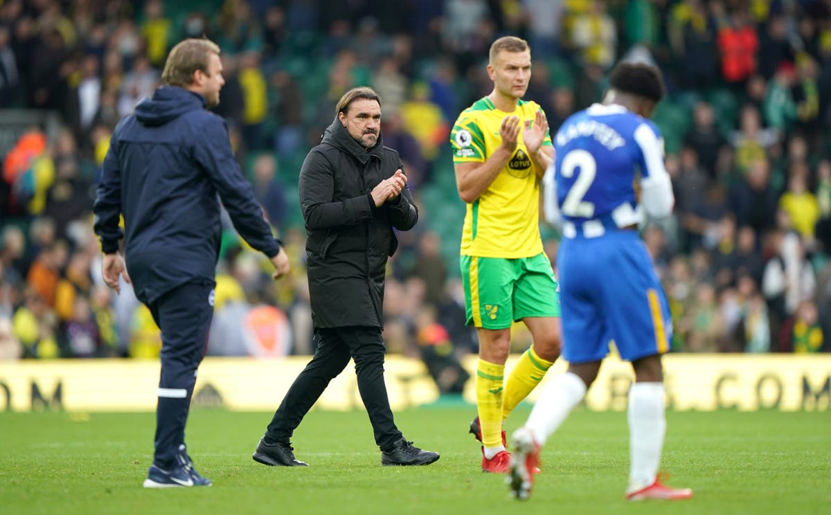Norwich boss Daniel Farke bemoans wasted opportunities in Brighton draw
