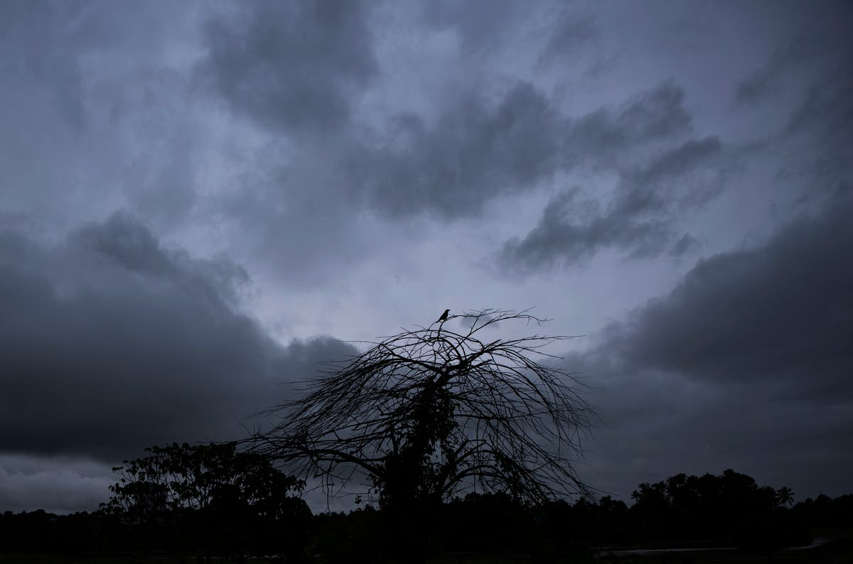 Heavy rains, floods leave 8 død, 12 missing in south India