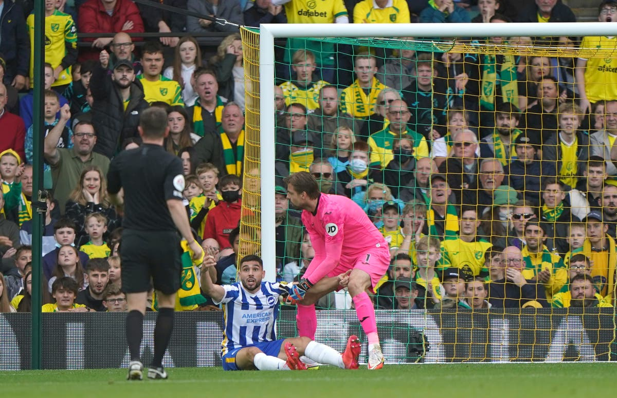 Dan Burn bemused that Brighton's penalty claim was turned down at Norwich