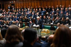 Backbench MPs don't get enough praise for the hard work they do | Salma Shah