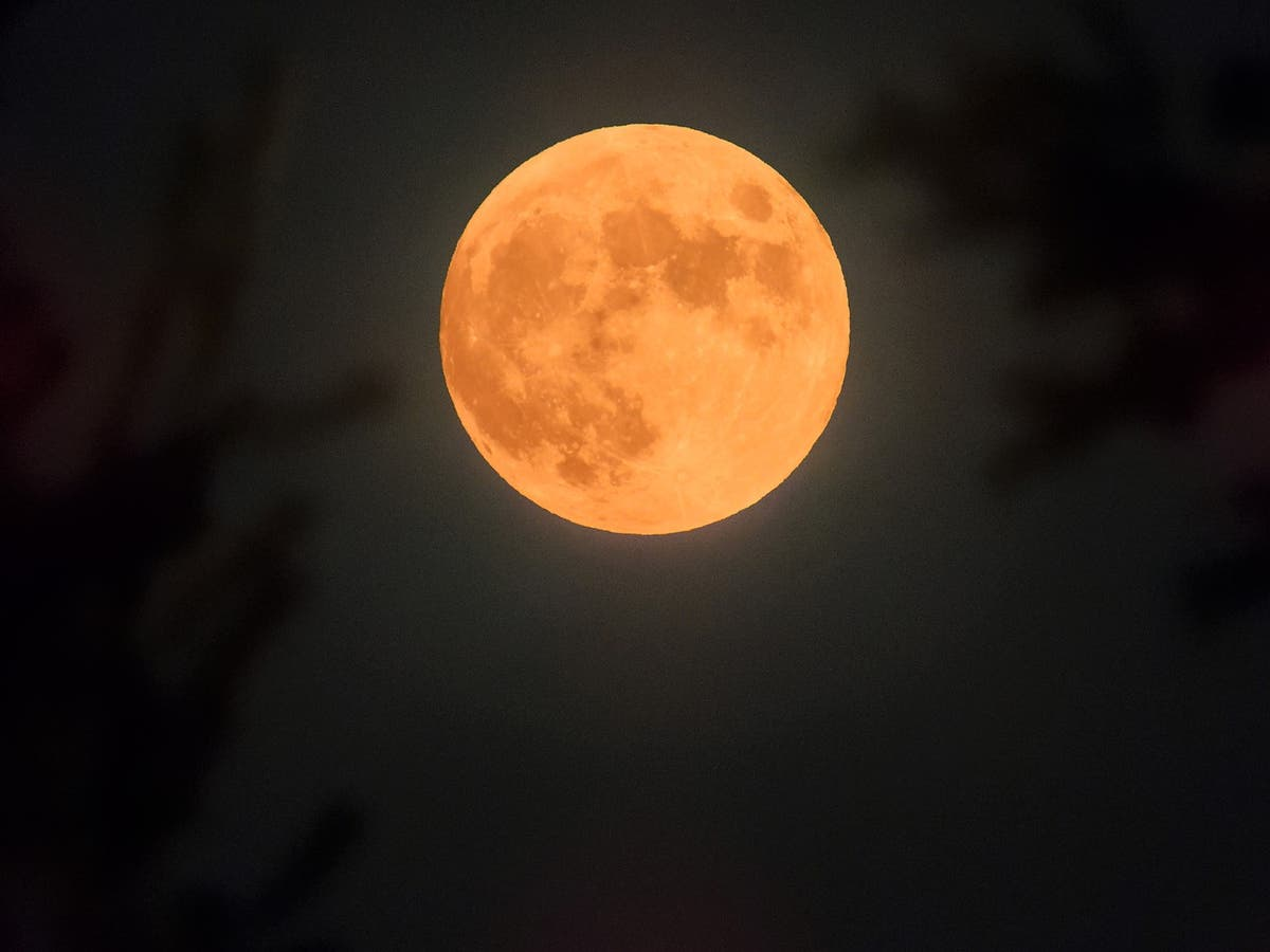How to see 'unique' Hunter's Full Moon tonight