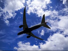 Government deletes document recommending curbs on aviation industry