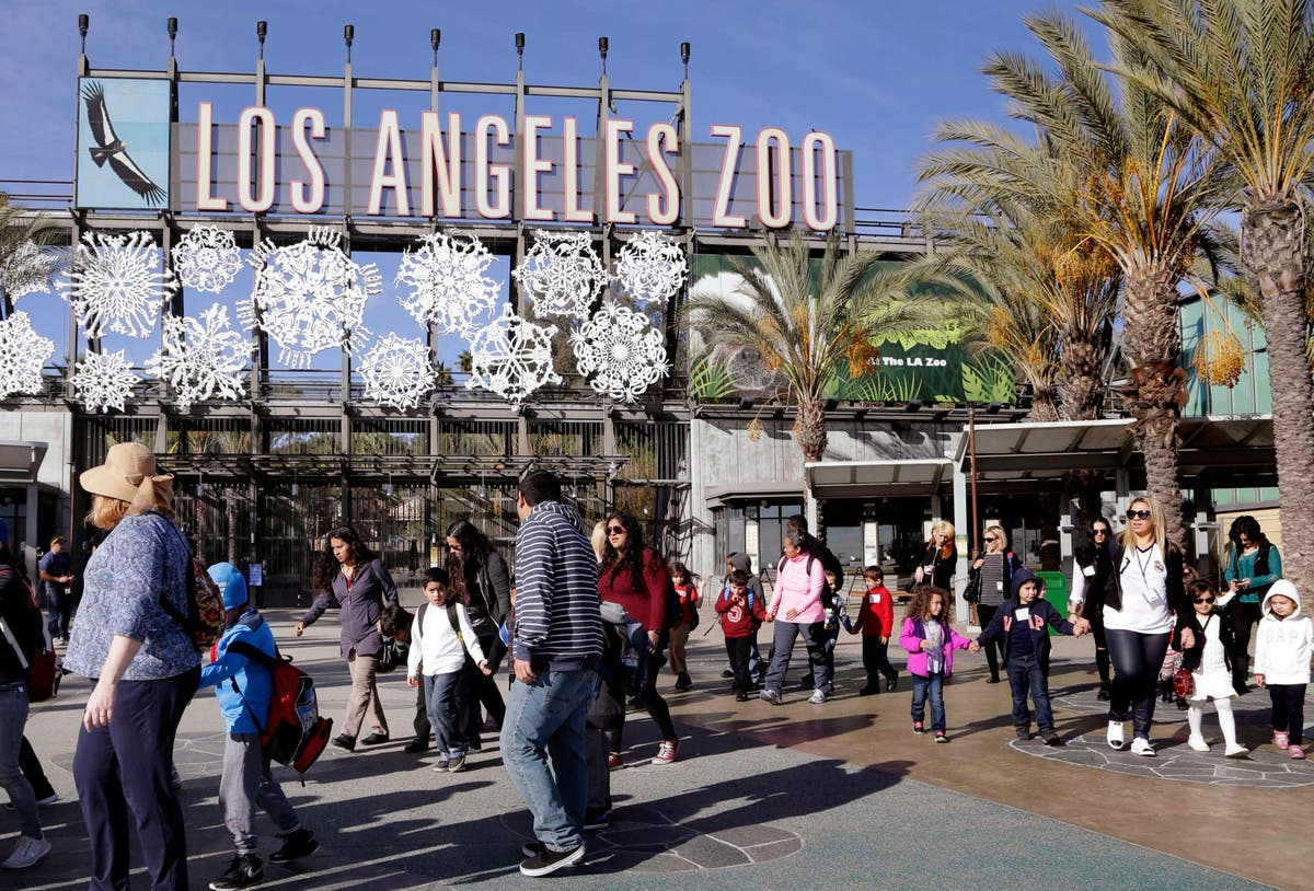 $650M plan would give Los Angeles Zoo flashy transformation