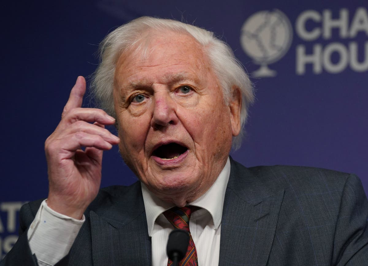 David Attenborough says Britain has 'moral responsibility' to 'act now' on climate