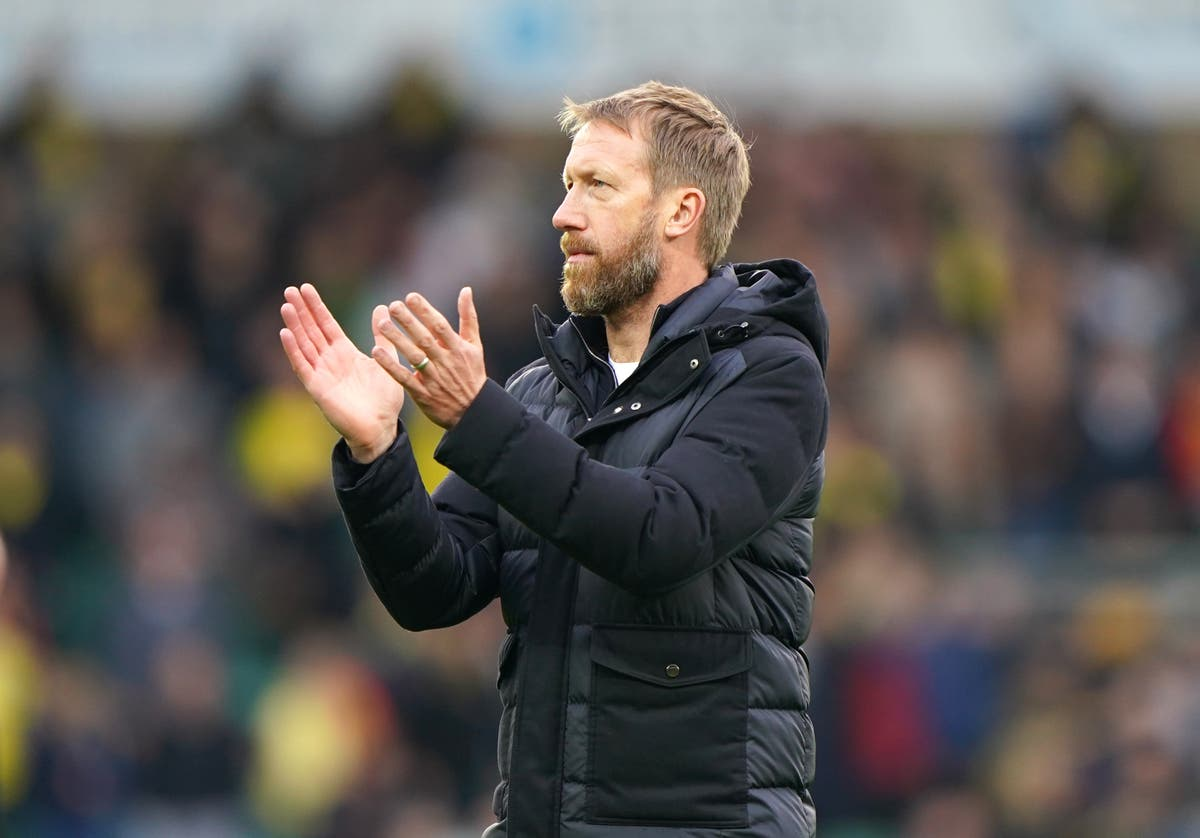 Graham Potter says Brighton's strength in depth means opportunities