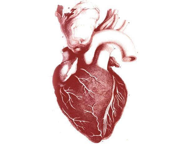 heart-ap.jpg