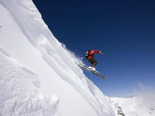 skiRex.jpg
