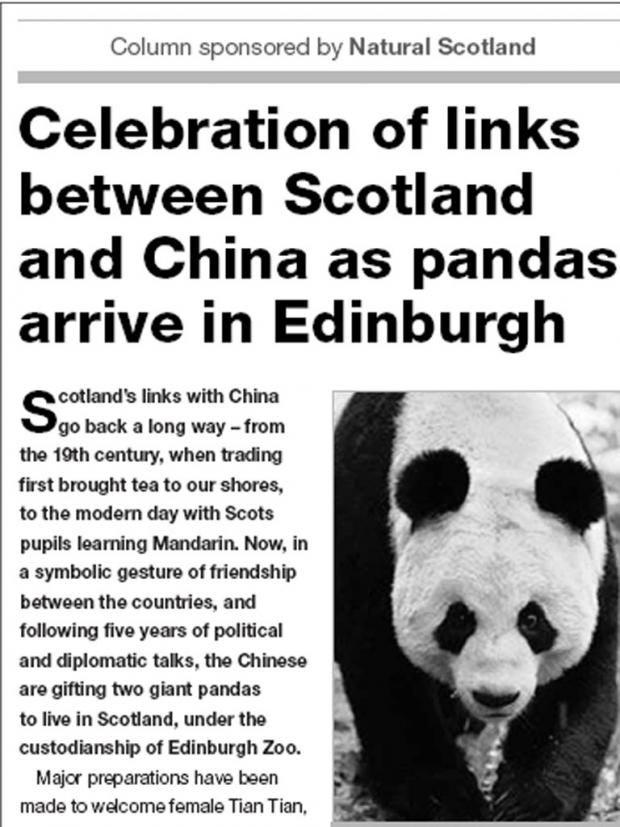 pg-10-panda-ad.jpg