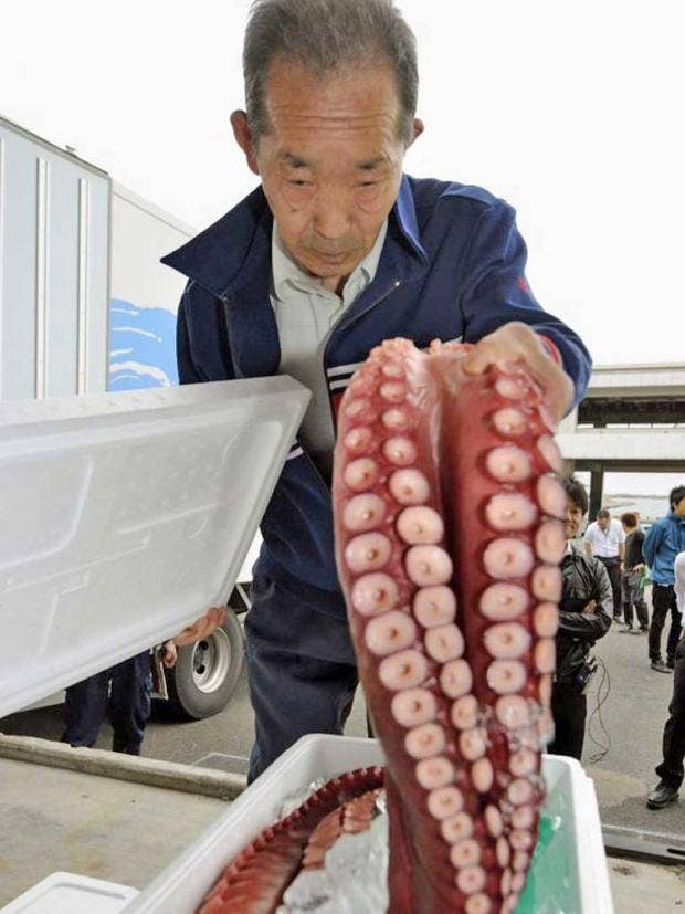 Pg-33-fukushima-ap.jpg