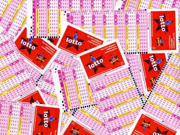 web-lotto-rex.jpg
