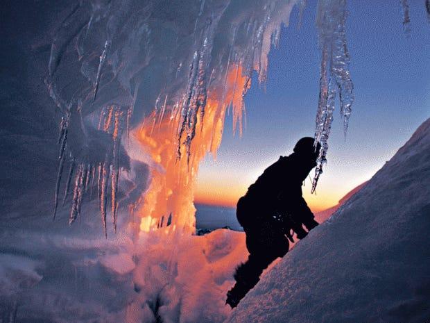foxglacier.jpg