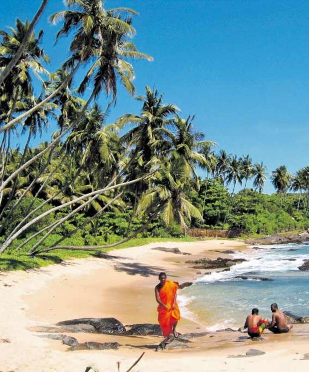 beach-bums.jpg