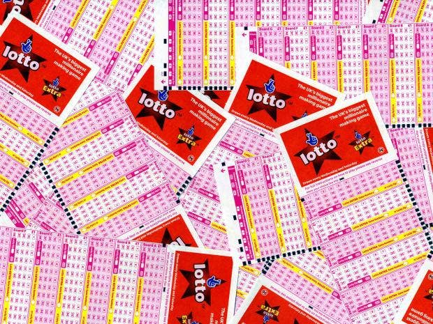 web-lottery-rex.jpg