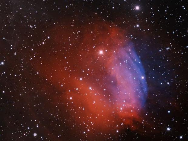 space-rose.jpg