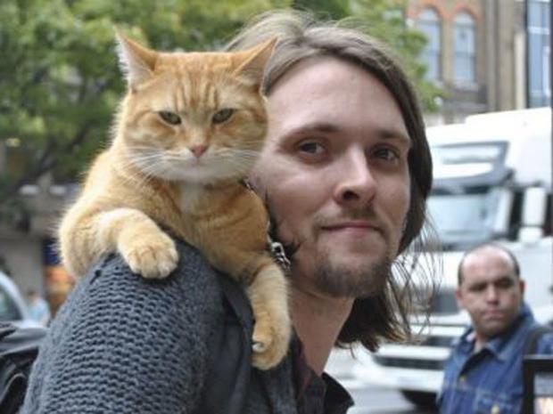 bob-no-ordinary-cat.jpg