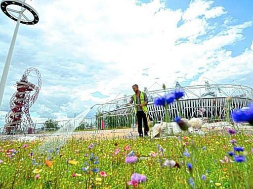 pg-34-urban-park.jpg