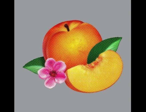 cd-fucking-peach.jpg