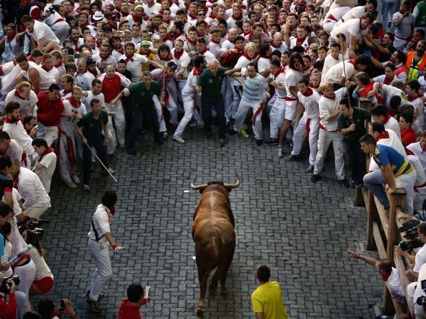 30-bull-AP.jpg