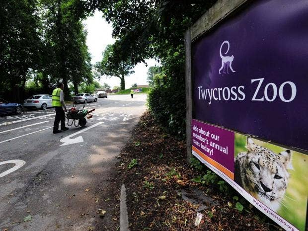AN25566509Twycross-Zoo-in-W.jpg