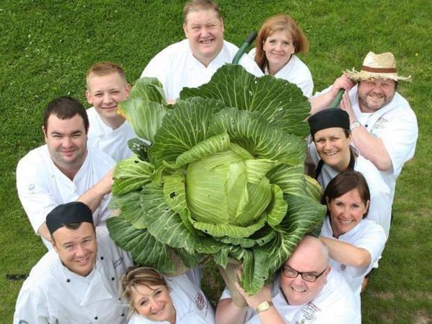 giant-cabbage.jpg