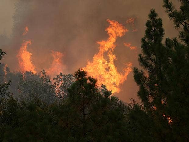 california-fire-1.jpg