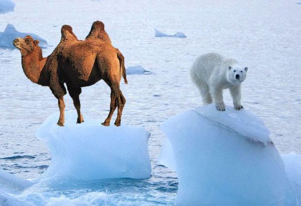 arcticeice2.jpg