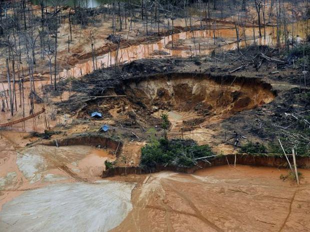 31_Peru_Rainforest_AFP.jpg