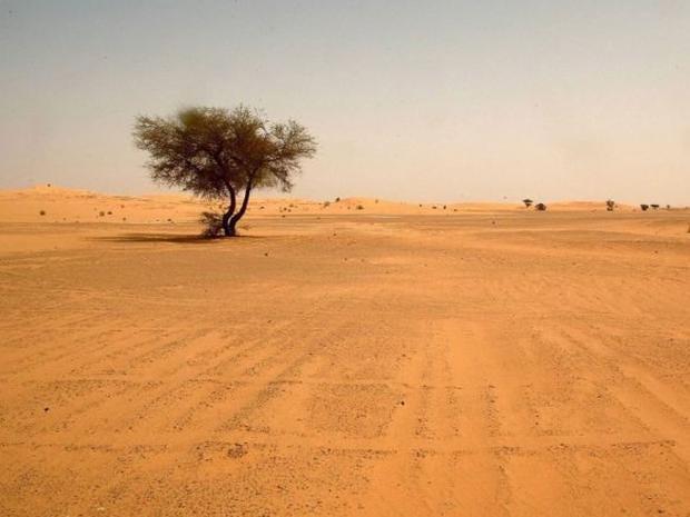 Saharadesert.jpg