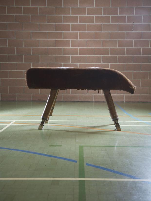 pommel-horse.jpg