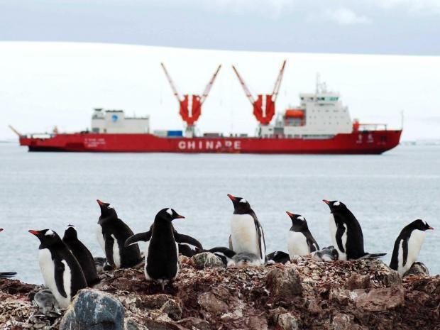 antarctica-rexfeatures.jpg