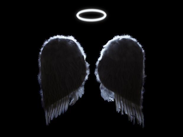 angel-gt-cr.jpg