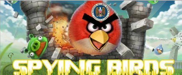 spying-birds.jpg