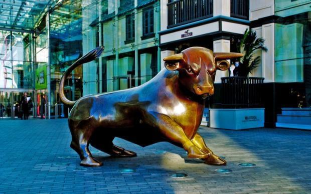 bull-ring.jpg