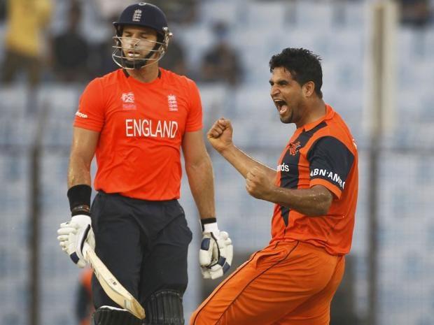 64-Cricket-AP.jpg