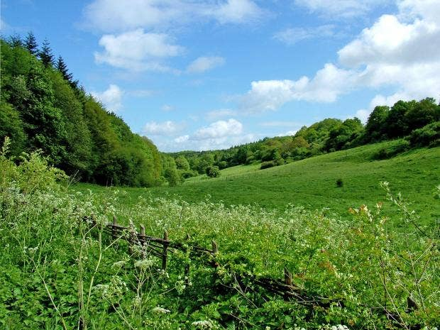 web-grasslands-pa.jpg