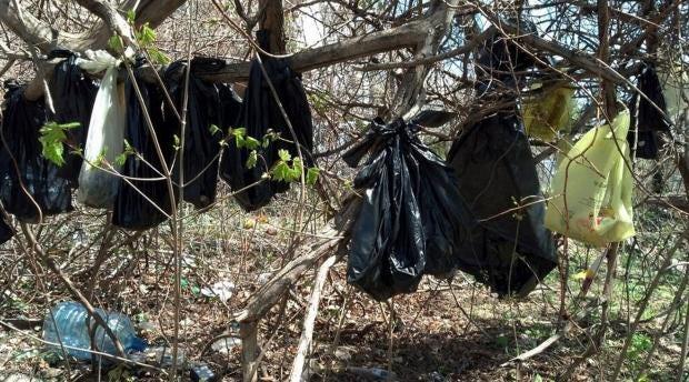 Dead-cats-in-bags.jpg