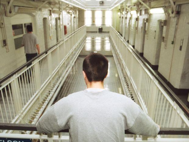 web-prison-rex.jpg