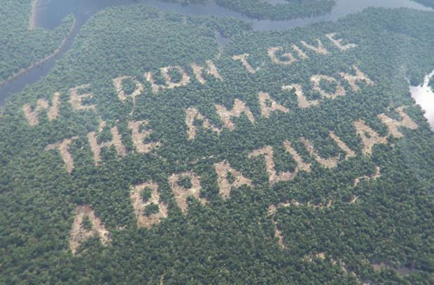 paddy-power-rainforest.jpg