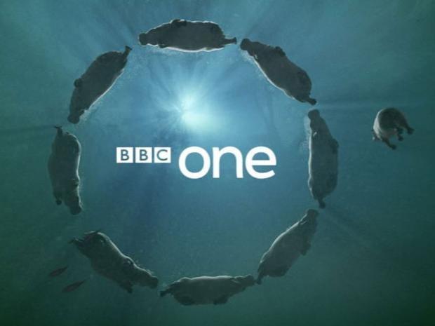 BBC1.jpg
