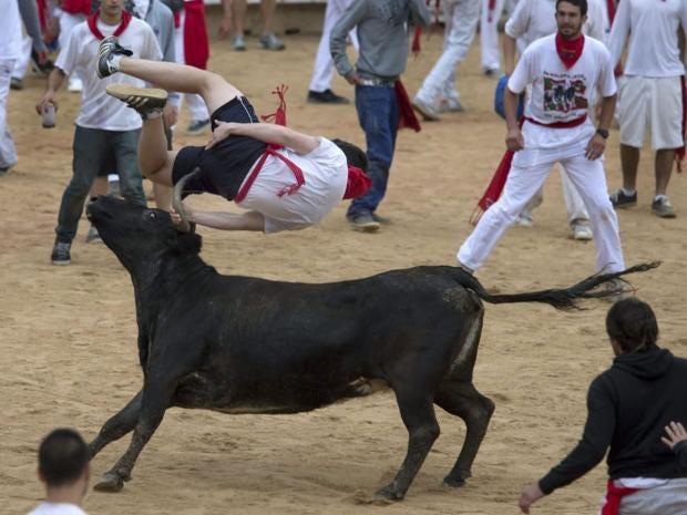 bulls-epa.jpg