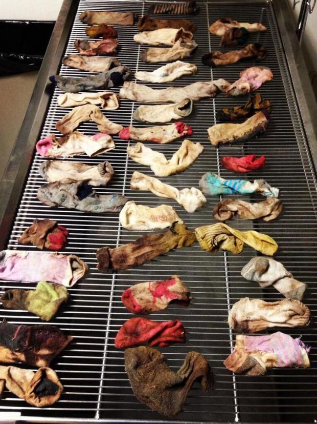 great_dane_socks.jpg