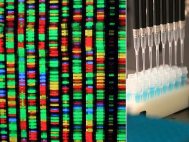 9-Genome.jpg