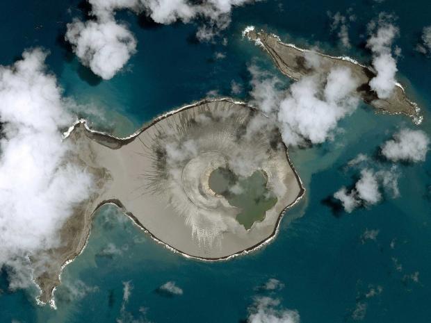 island2-rex.jpg