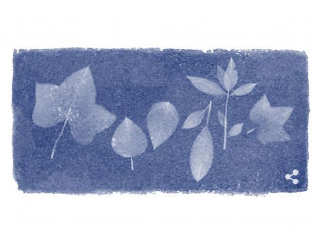 Anna-Atkins-Google-Doodle.jpg