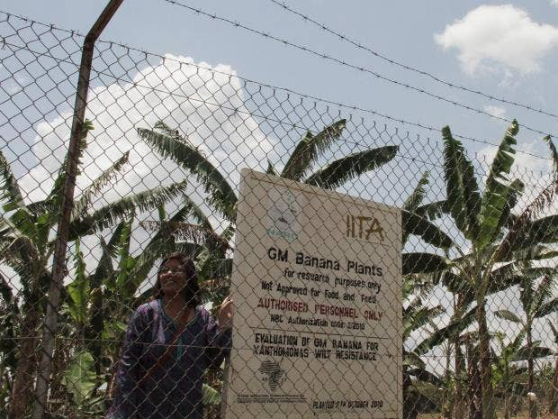 leena-tripath-uganda.jpg