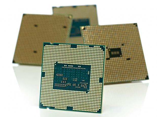 CPU-Rex.jpg