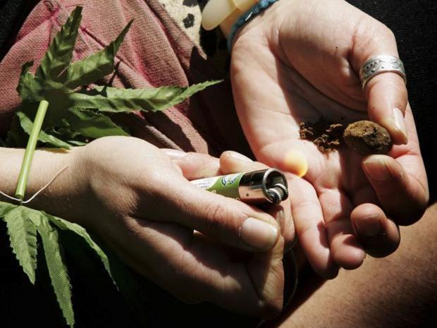 1-cannabis-plant-pa.jpg