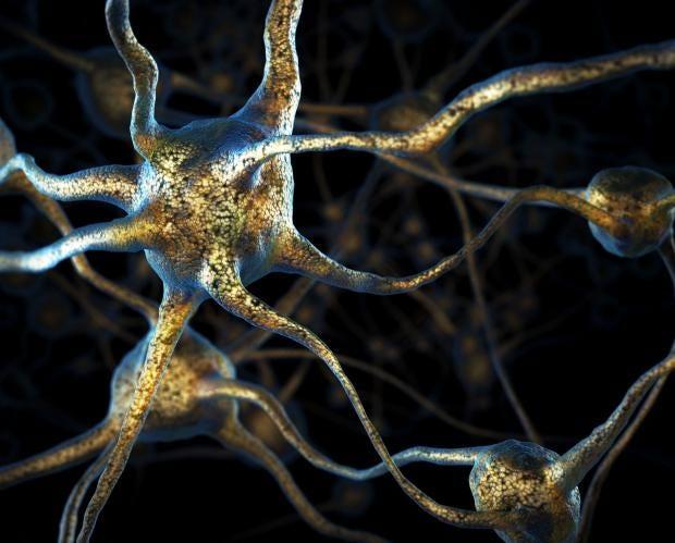 neuron-brain-2.jpg