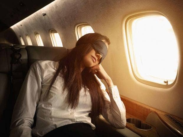 plane-sleeping-rex.jpg